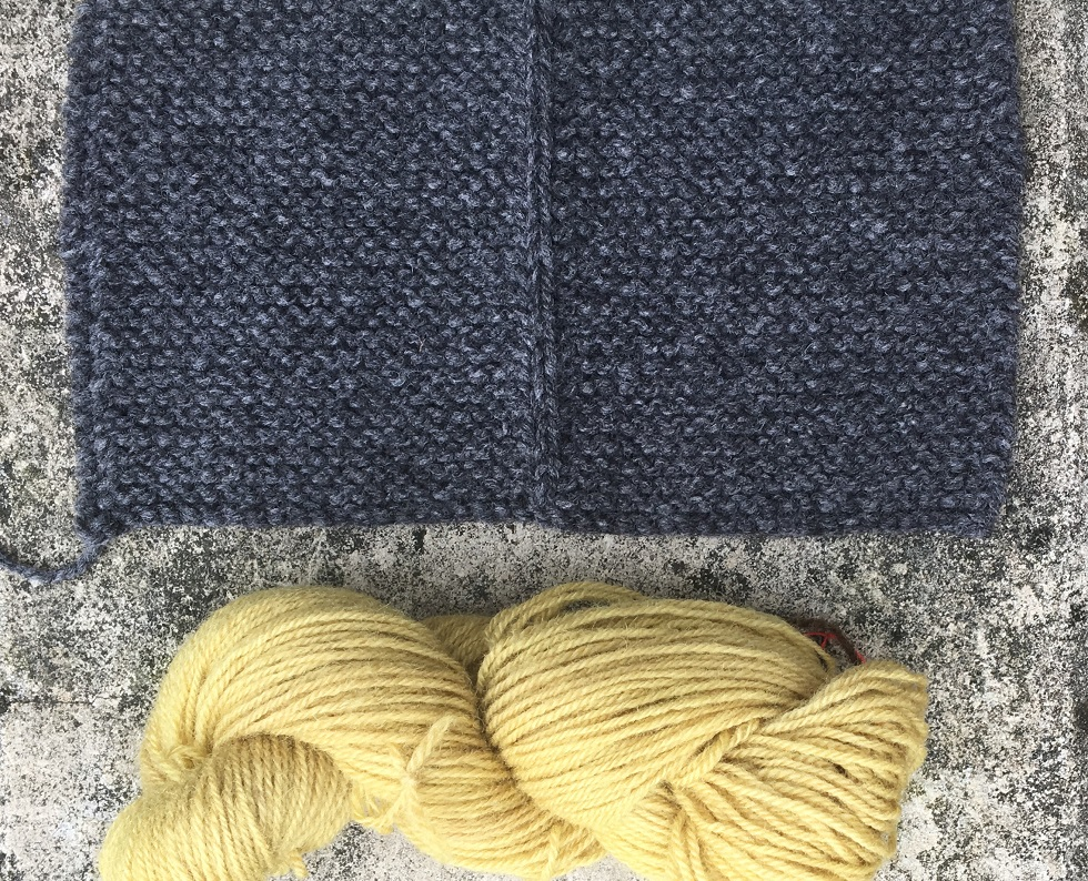 dark grey knitted swatch for a man's traditional jacket with skein of goldenod-dyed wool