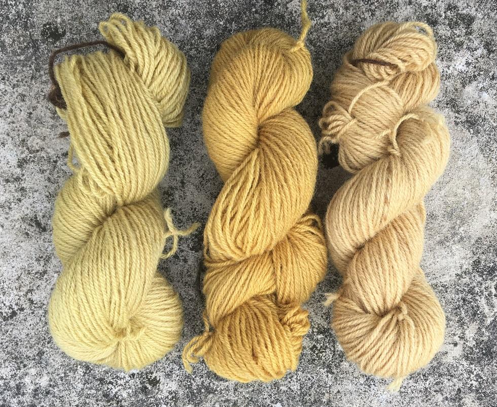 Mit Goldrute gefärbte Strickwoll